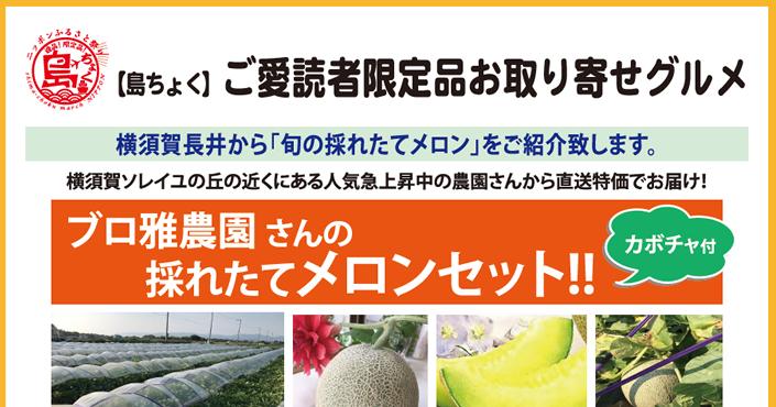 https://shima-choku.com/articles/images/20180716.jpg